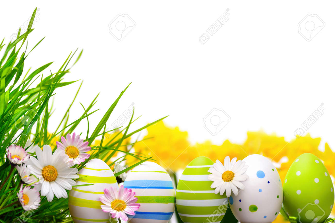 Border Arranged With Easter Eggs Little Spring Flowers And Grass