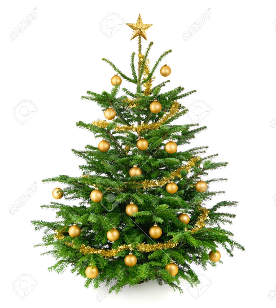 clean foto de estudio de un muy bonito rbol de navidad natural decorado con objetos