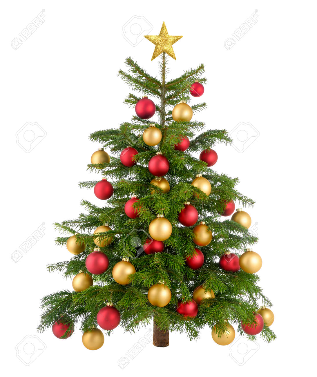 clean studio shot of a gorgeous natural christmas tree decorated with red and gold baubles and