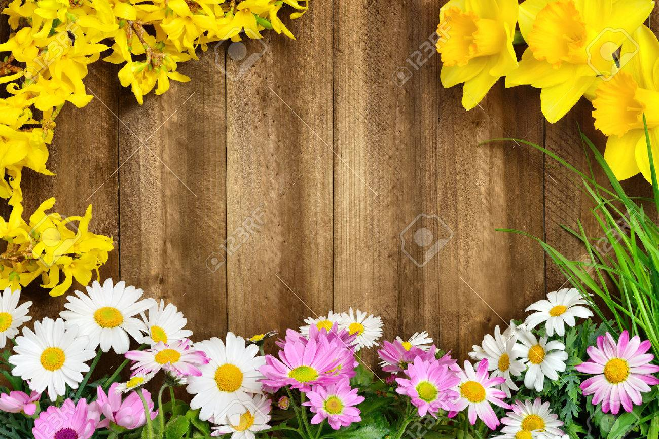 Coloridas Flores De Primavera Y Las Altas Hierbas Frescas Enmarcan ...