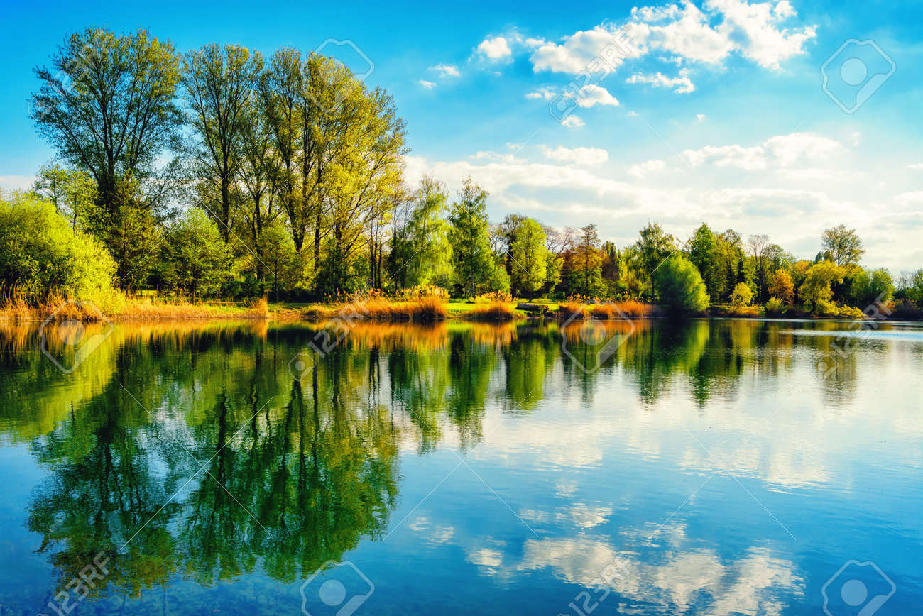 Tranquil landscape at a lake, with the vibrant sky, white clouds and the trees reflected symmetrically in the clean blue water - 40974479