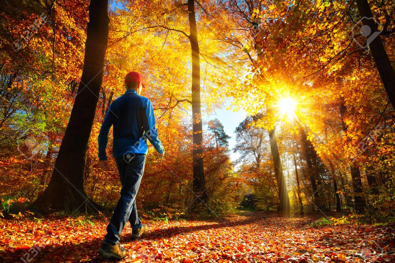 Caminante Hombre Caminando Hacia Los Rayos De Oro Brillantes De La ...