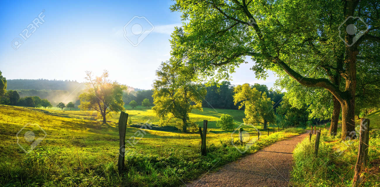 Rural landscape with a path, trees and meadows on hills, blue sky and pleasant warm sunshine from the low sun - 148396865