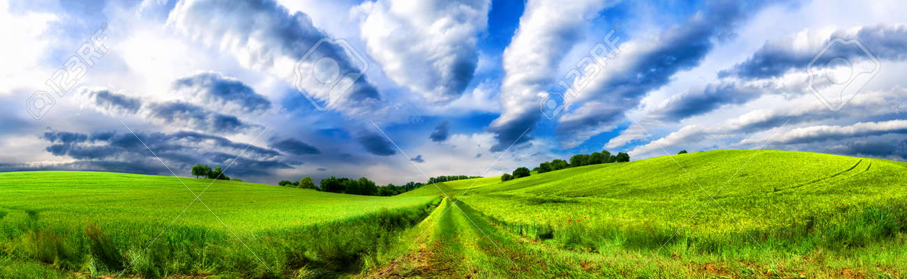 Panoramic rural landscape with idyllic vast green fields on hills and fascinating cloudscape - 149775557