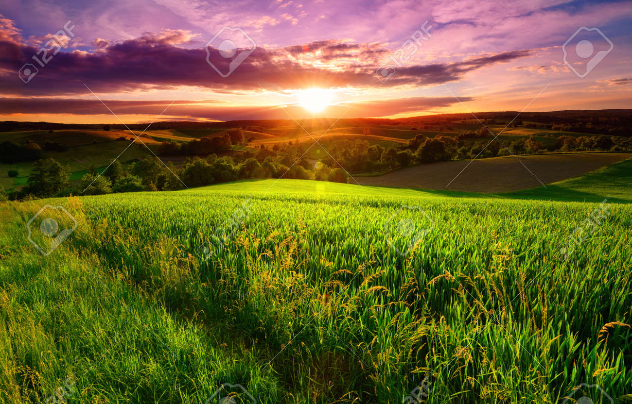 Sunset scenery on a green field with forests and hills on the horizon and the sky painted in gorgeous dramatic and emotional colors - 151163430