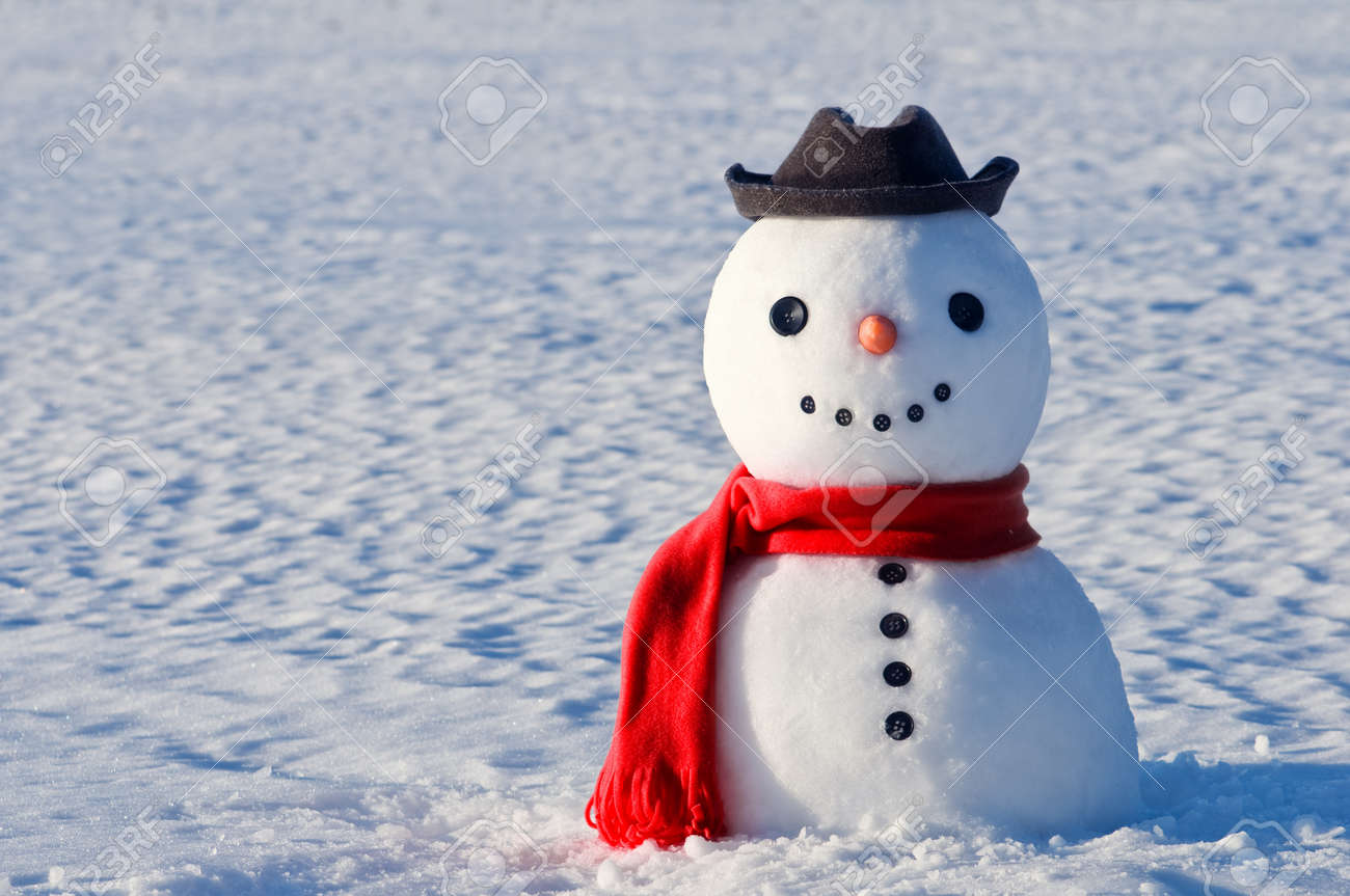 cute snowman on snowy field Standard-Bild - 17434974