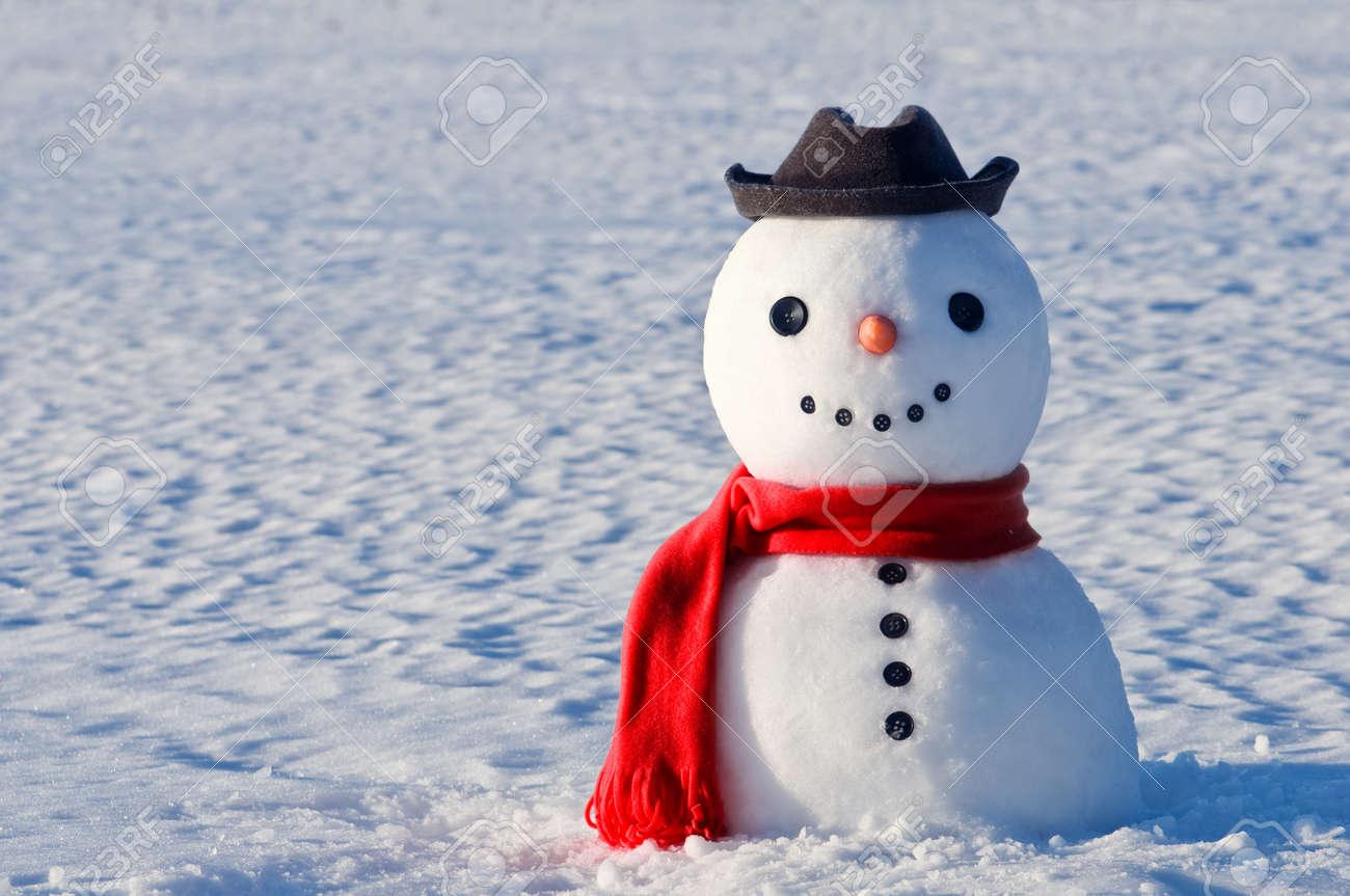 niedlichen Schneemann auf schneebedeckten Feldes Standard-Bild - 17434974
