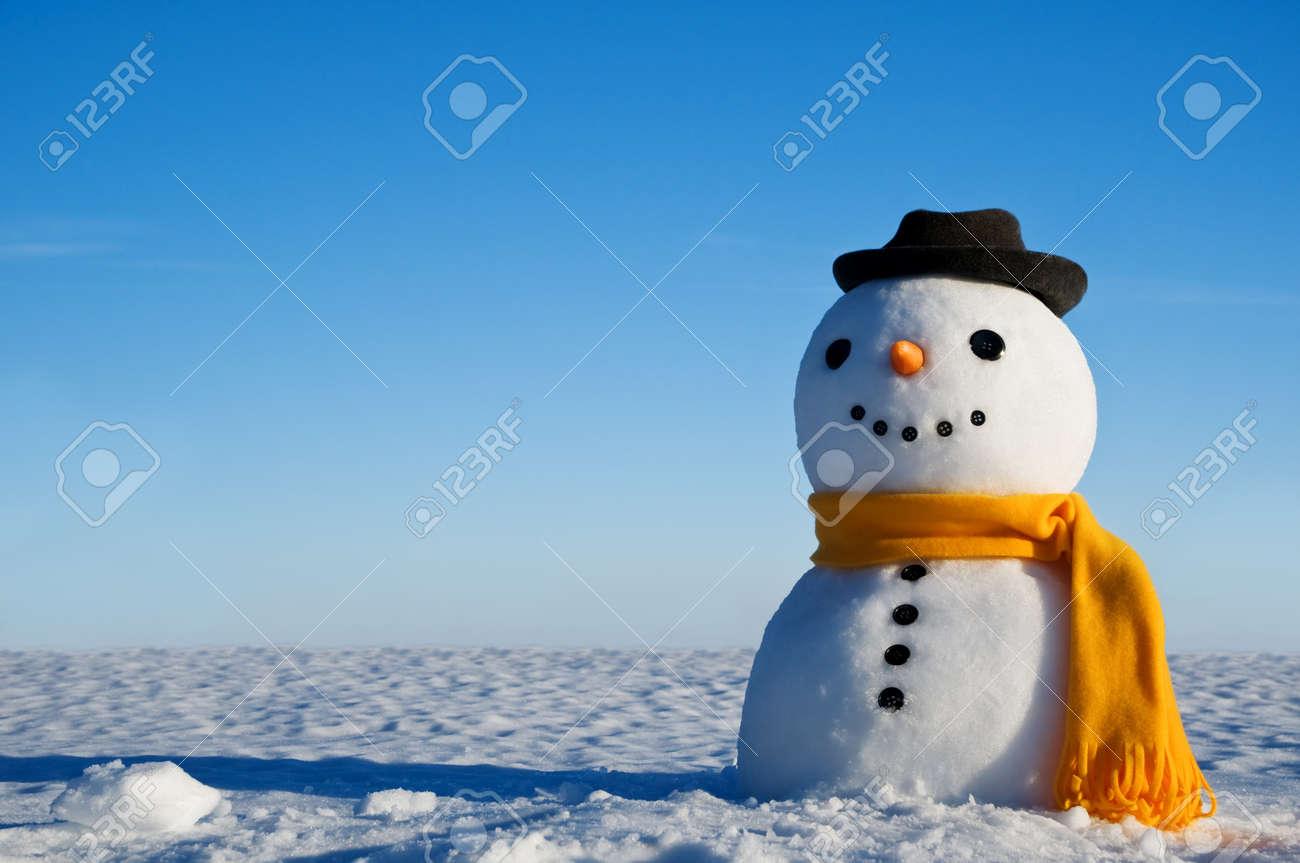 snowman look in sky and wait spring Standard-Bild - 18022889