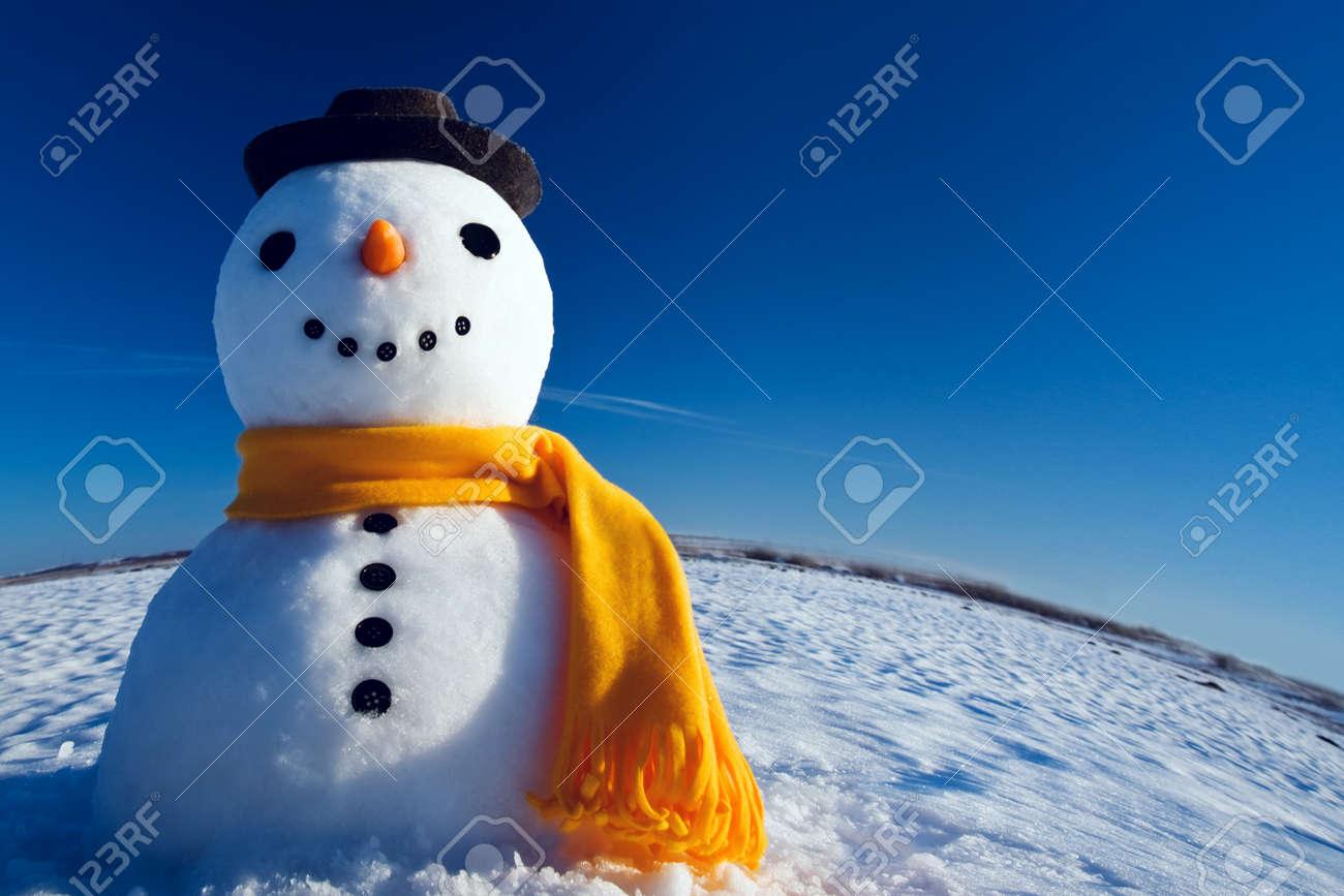 snowman look in sky and wait spring Standard-Bild - 18022857