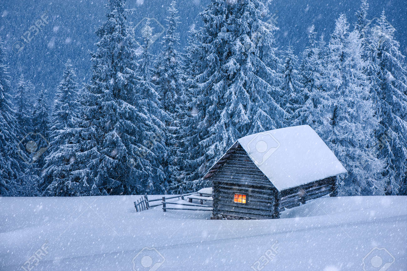 wooden house in winter forest - 23258698