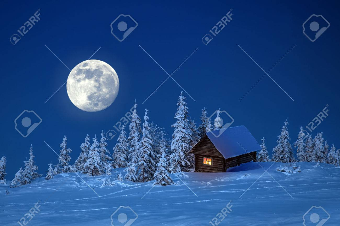 wooden house in winter forest - 29001081