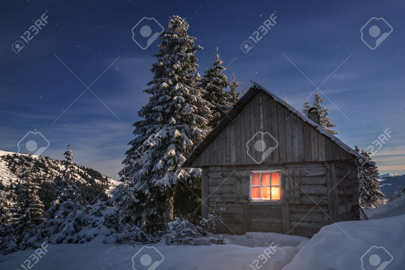 wooden house in winter forest - 29001101