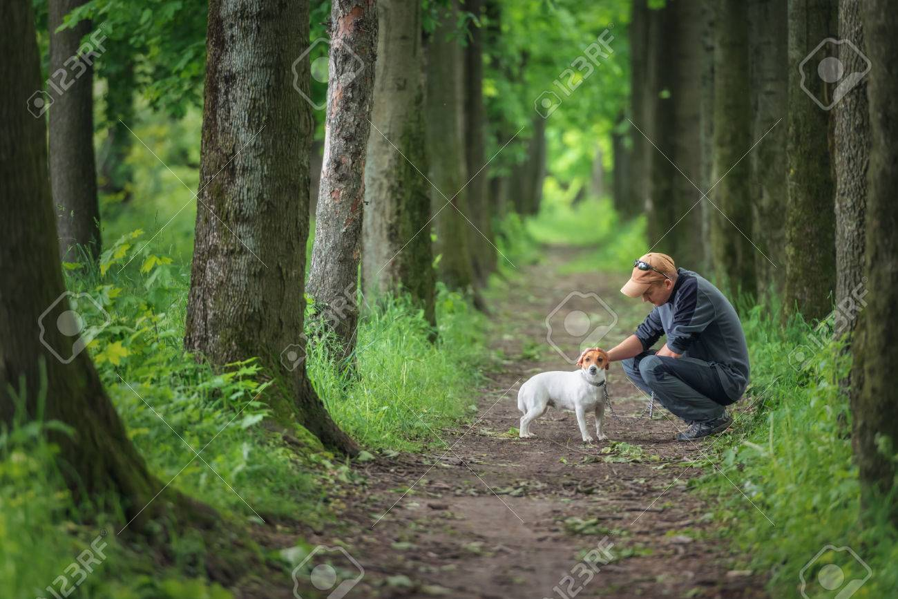 man and dog walking on park - 30429443