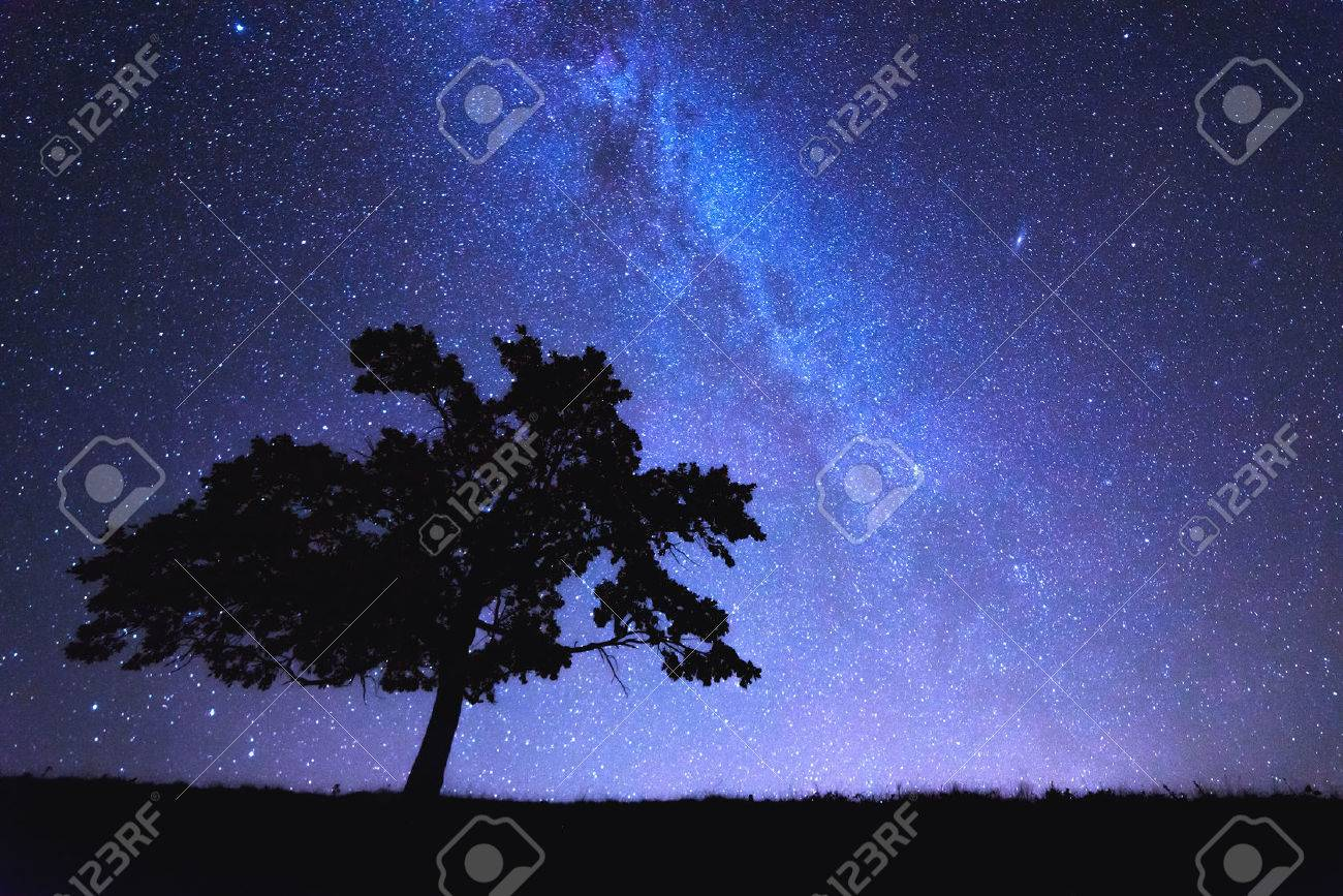alone tree and milky way Standard-Bild - 32815985