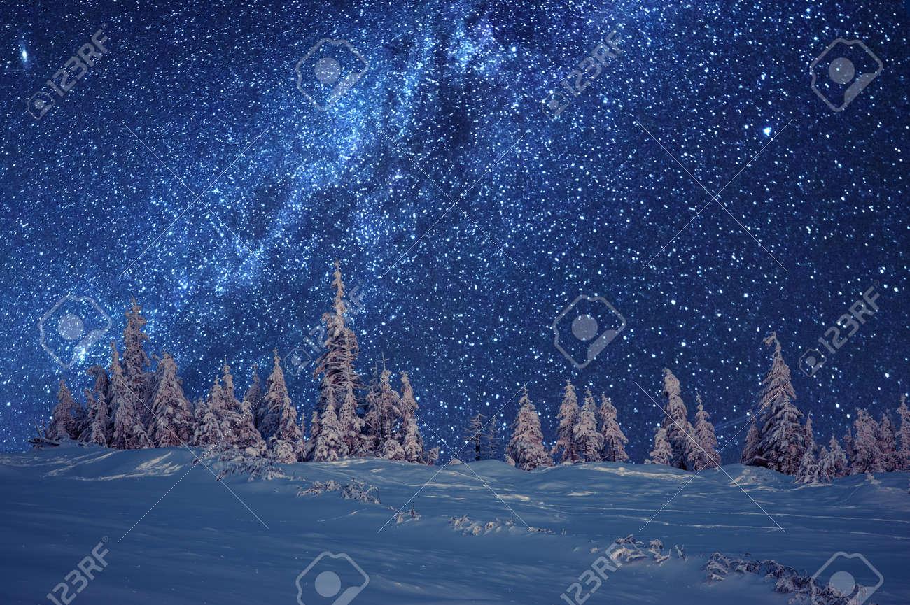 winter forest and milky way Standard-Bild - 48337148