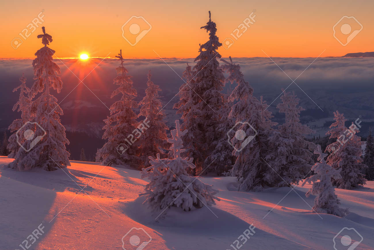 Fantastic orange evening landscape glowing by sunlight. Dramatic wintry scene with snowy trees. Kukul ridge, Carpathians, Ukraine, Europe. Merry Christmas! Standard-Bild - 49201318
