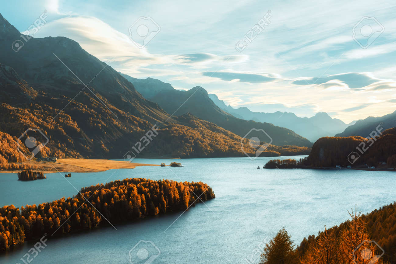 Epic view on autumn lake Sils (Silsersee) in Swiss Alps. Autumn forest with yellow larch on background. Landscape photography - 130760040