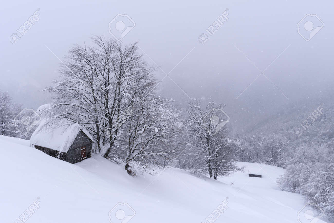 Fantastic winter landscape with wooden house in snowy mountains. Christmas holiday concept - 134829066
