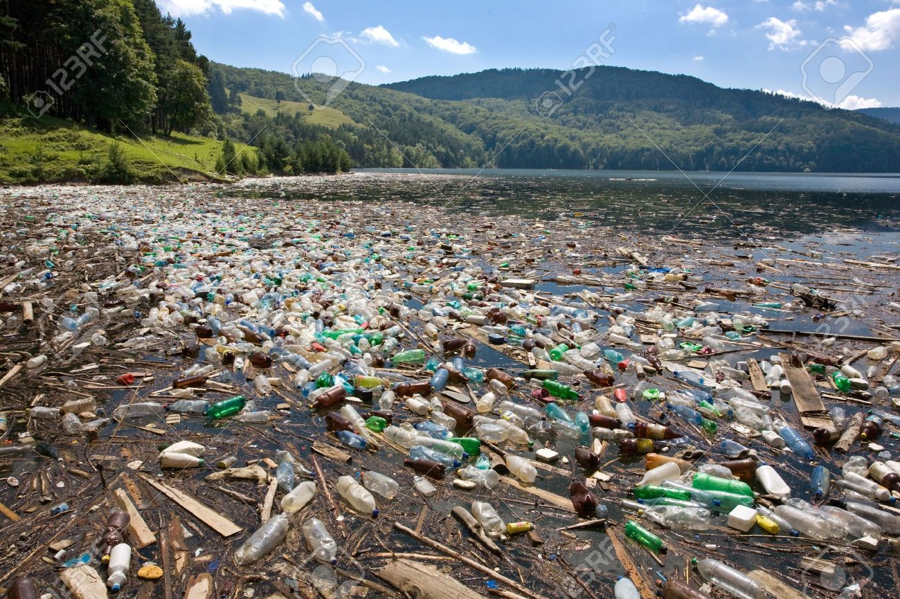 plastic bags are hazardous for the environment essay research plastic bags are hazardous for the environment essay
