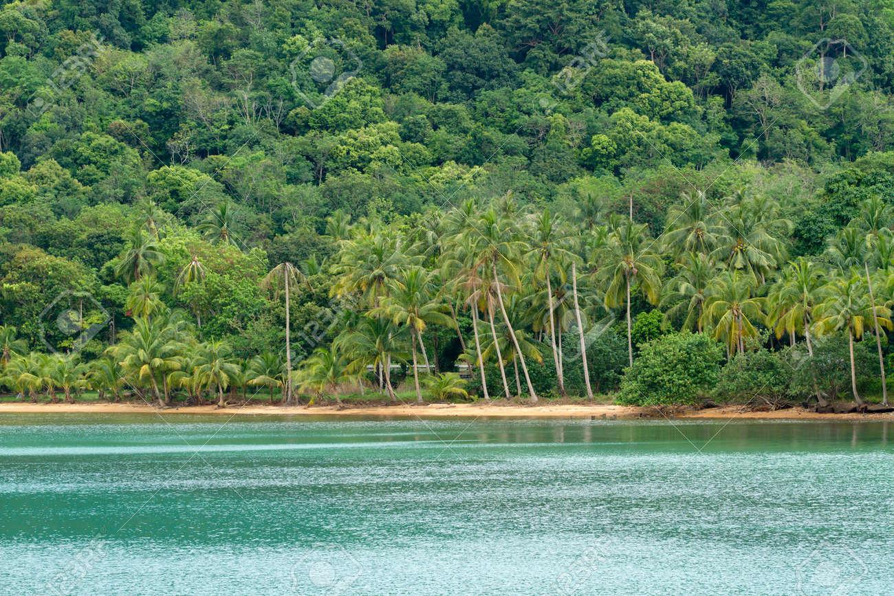 beautiful tropical beach and rainforest in ko chang island, thailand Stock Photo - 9736647