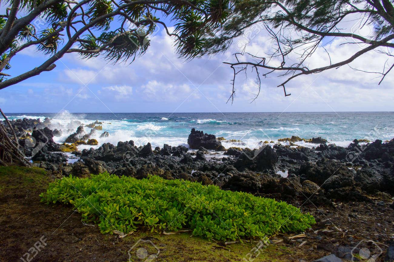 La Costa De Maui Se Enmarca En Un Día Ventoso Fotos, Retratos ...