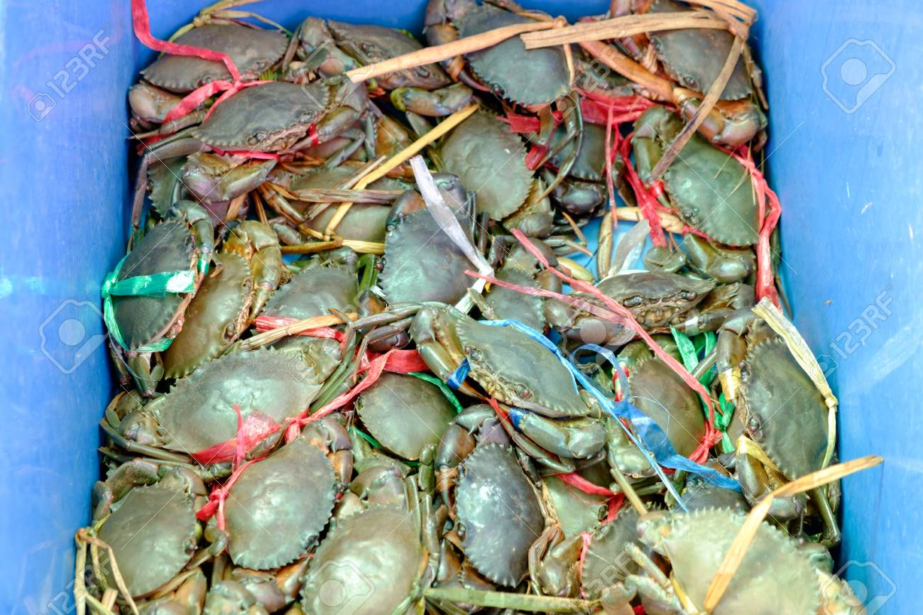 Live crabs were tied with rope, put a bucket on sale at the market