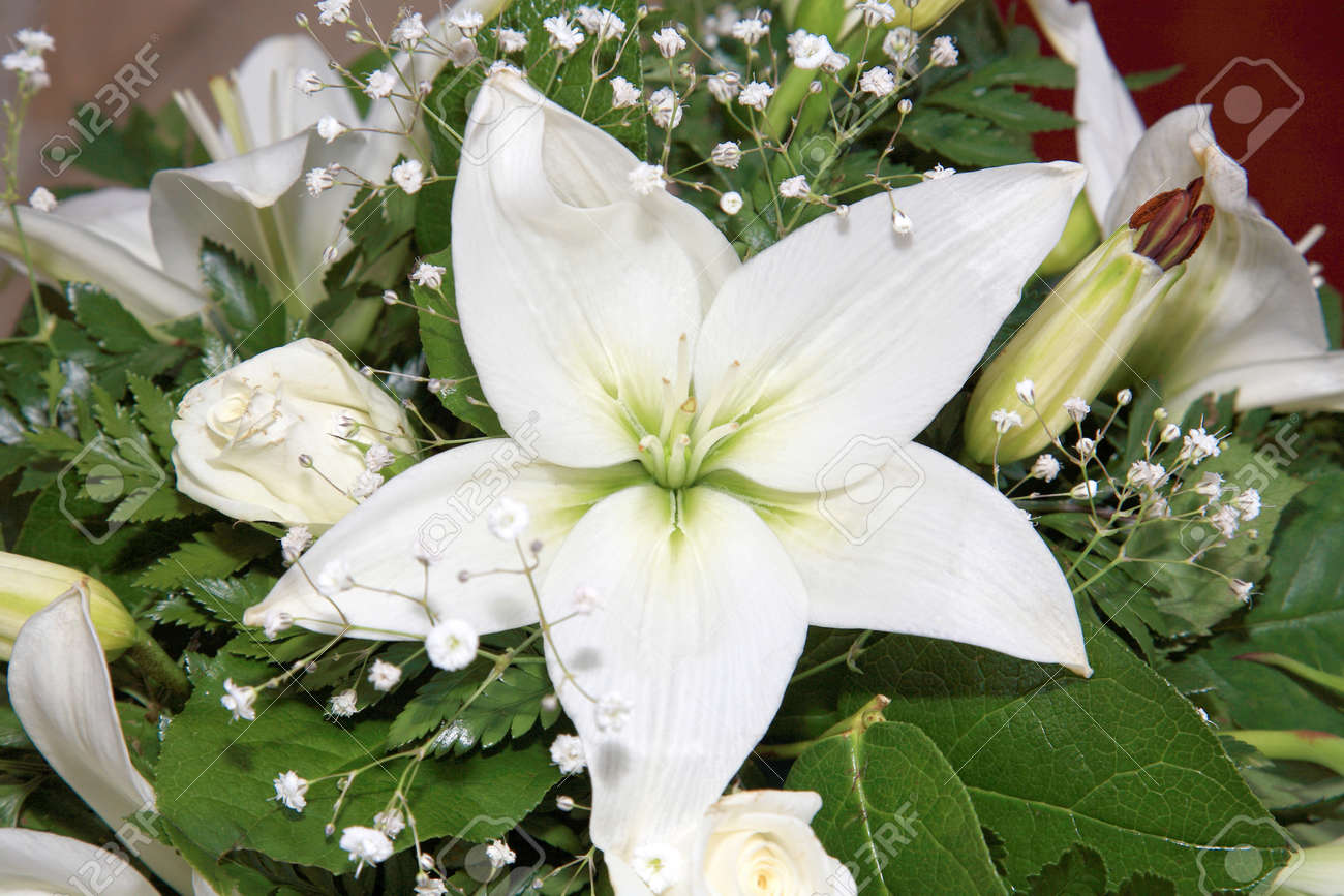 white flower composition for decoration inside a church Stock Photo - 11068654