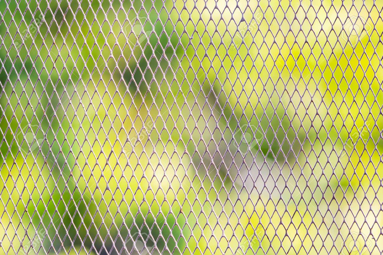 Maschendrahtzaun Um Den Garten Von Tieren Geschützt Lizenzfreie ...