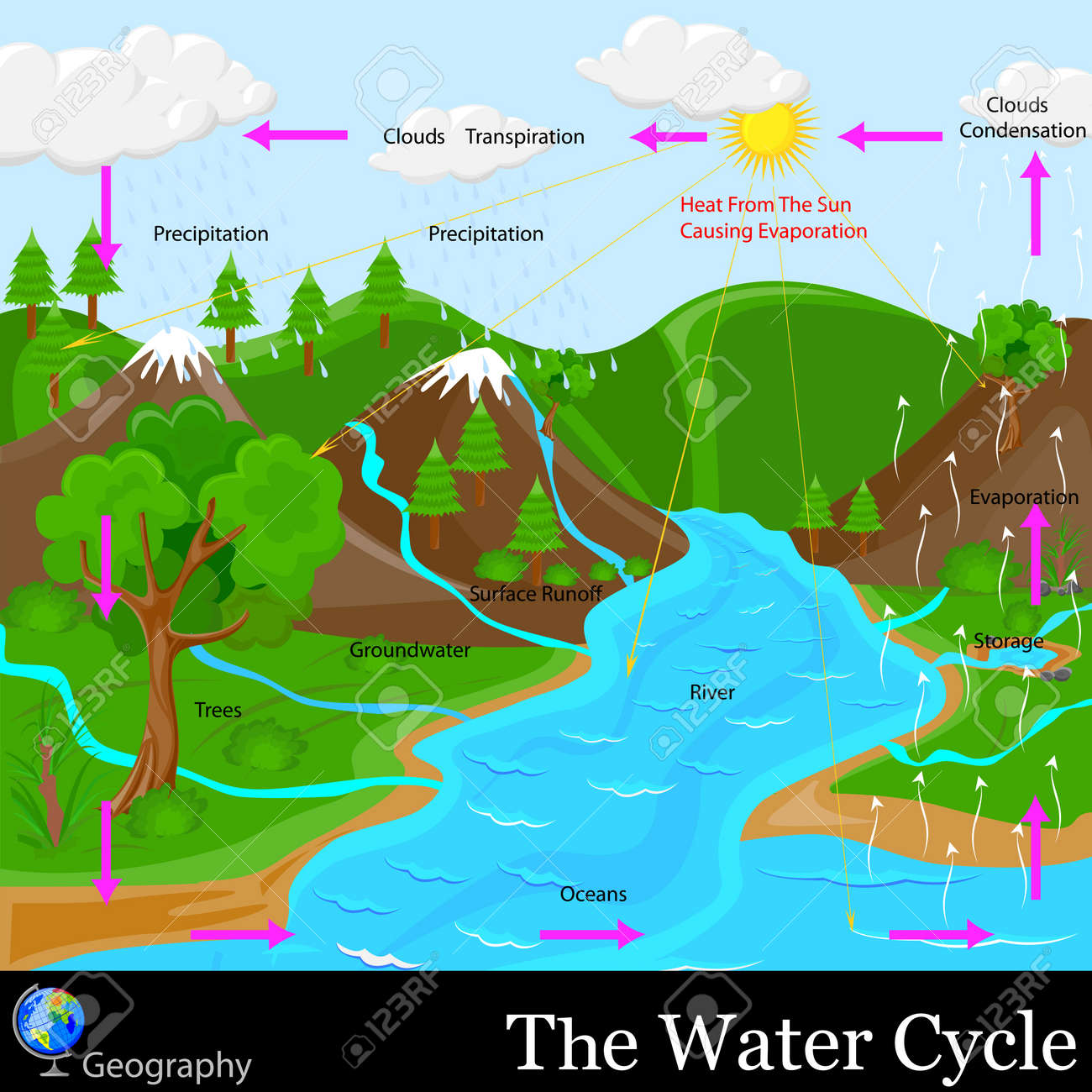 Water Cycle Stock Vector - 19902295