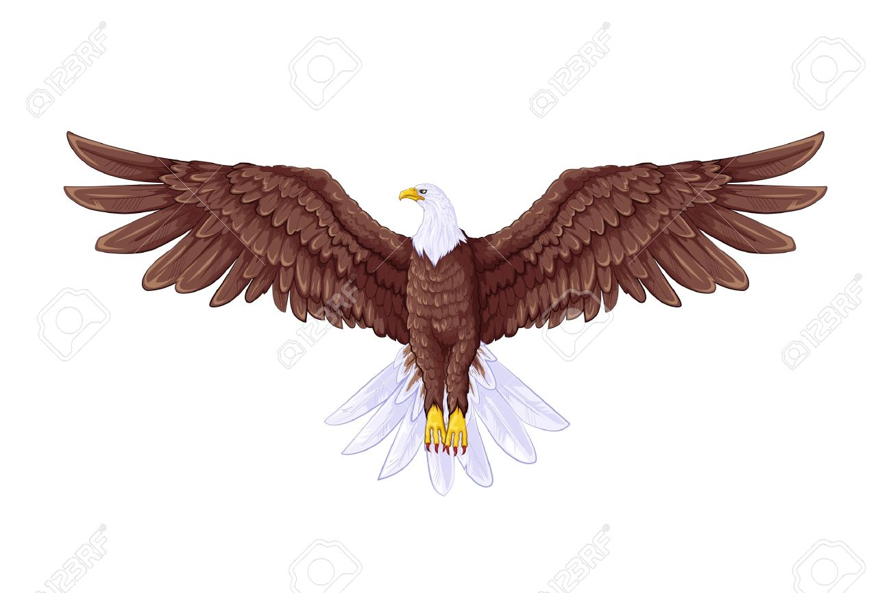 9 554 eagle flying stock illustrations cliparts and royalty free rh 123rf com Eagle In-Flight Clip Art free flying eagle clipart