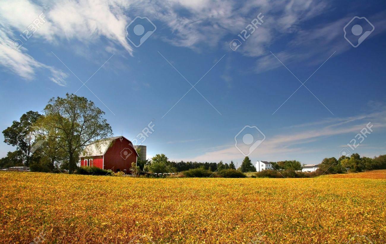 Scenic Farm Landscape Stock Photo - 3653312