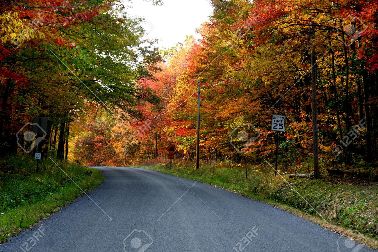 Autumn drive Stock Photo - 5575810