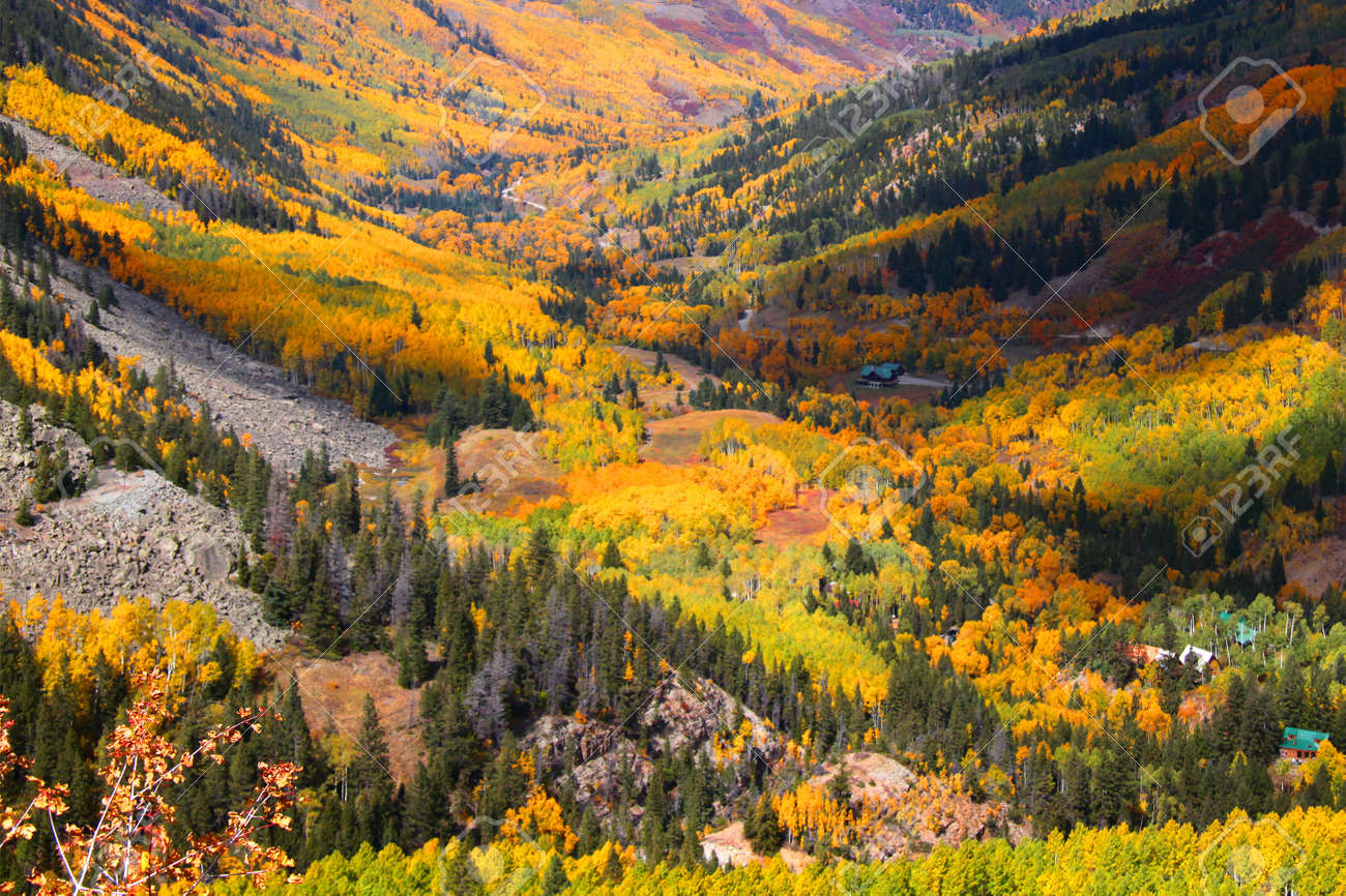 Aspen valley in Colorado during Autumn time Stock Photo - 9071132