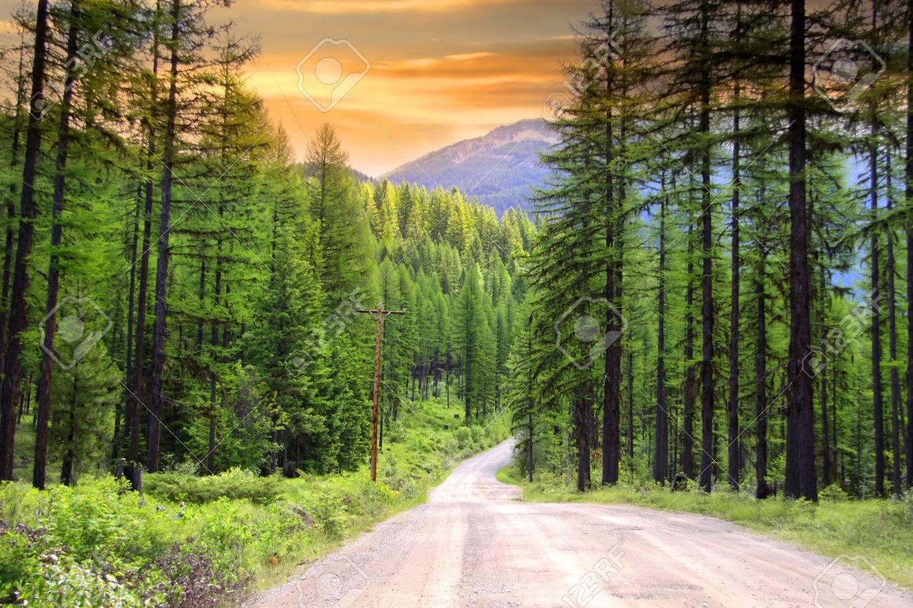 Scenic rural drive in Montana - 27311129