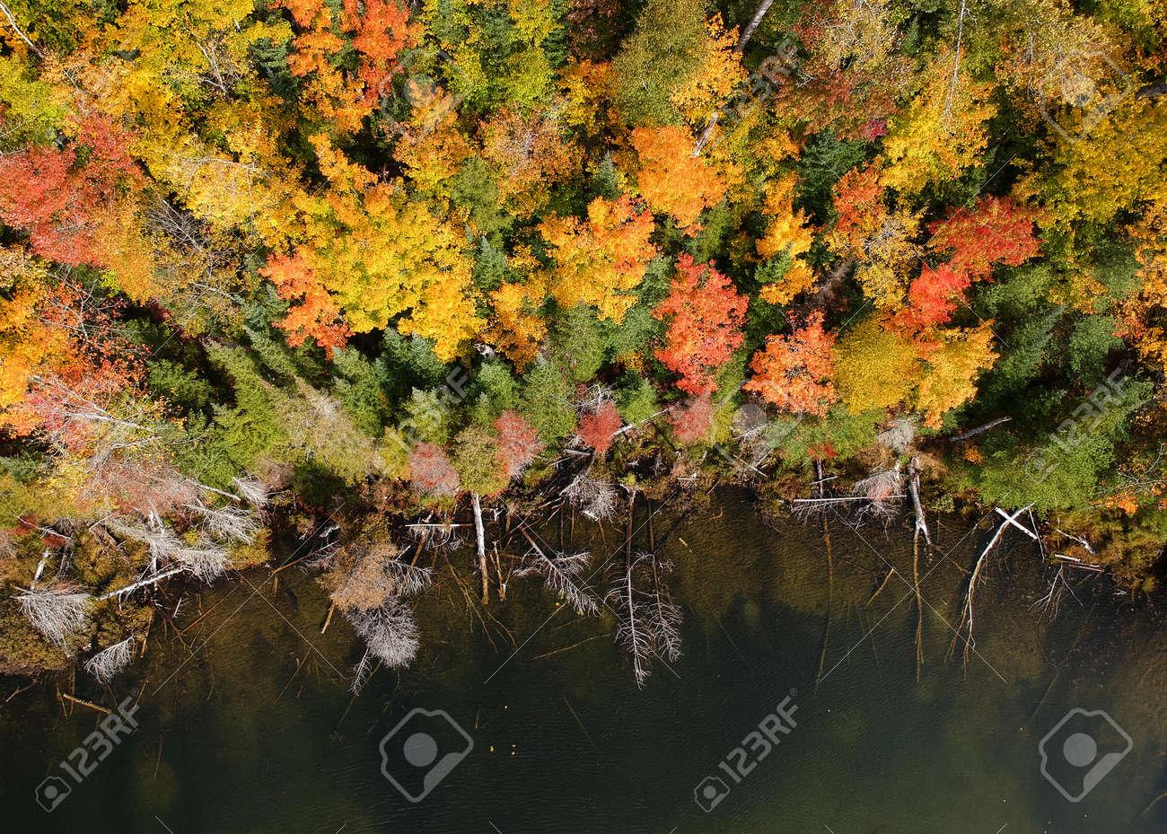 Aerial view of fall foliage along Council lake in Michigan upper Peninsula - 163916596