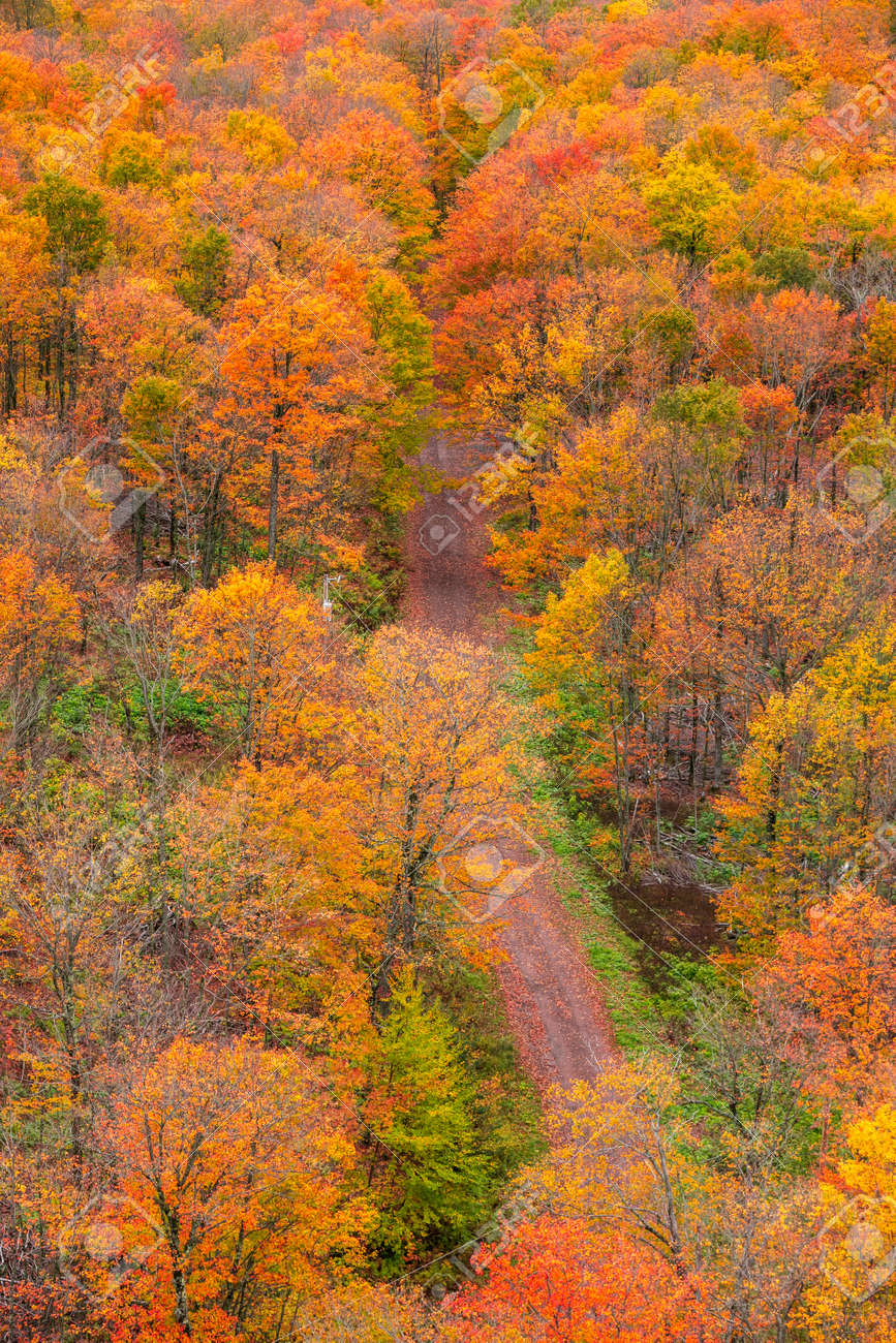 Aerial view of colorful fall foliage by the rural road in Michigan upper peninsula - 163916597
