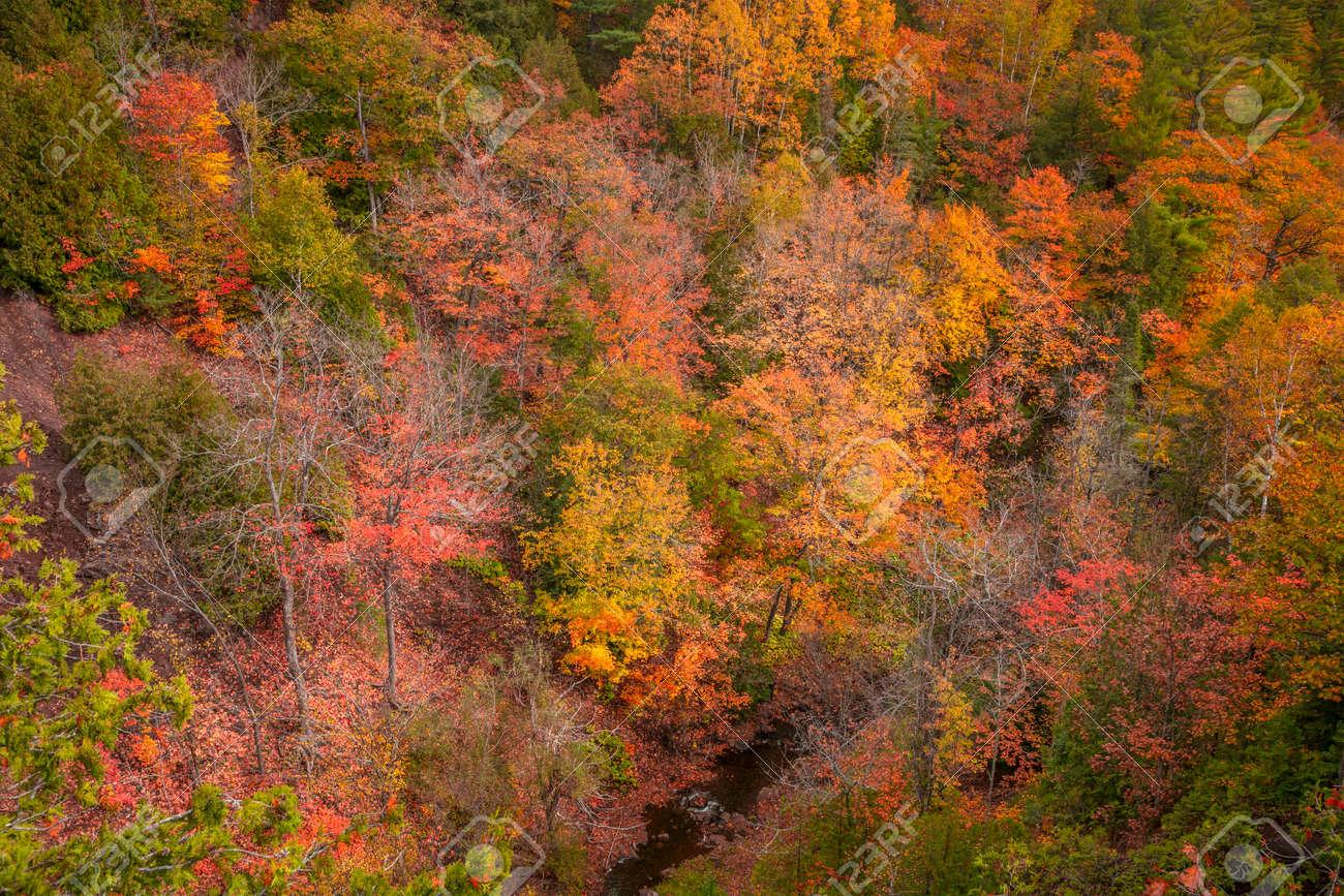 Aerial shot of colorful fall foliage along Hammell creek in Michigan upper peninsula - 163916620