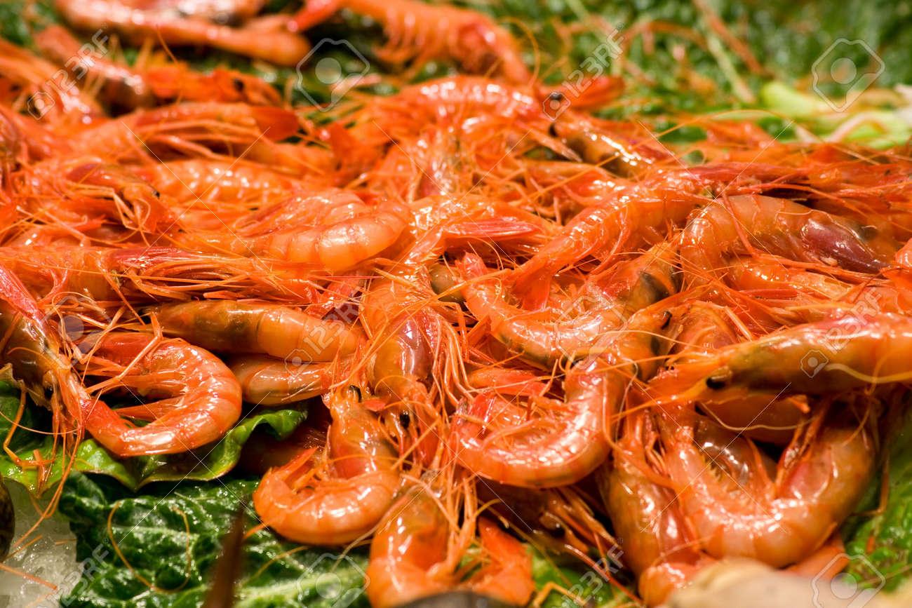 Shrimps display on a leaf at fish market Stock Photo - 3697664