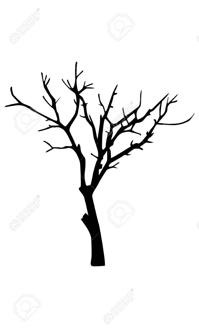 Kurumuş Ağaç çizimi
