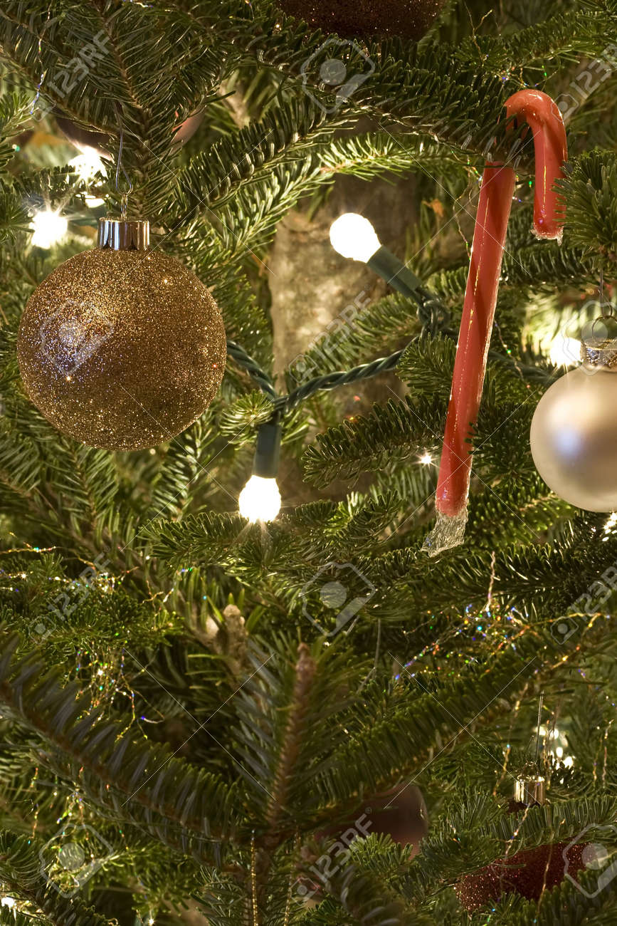 Foto Albero Di Natale Addobbato.Albero Di Natale Addobbato Per Tutte Le Festivita