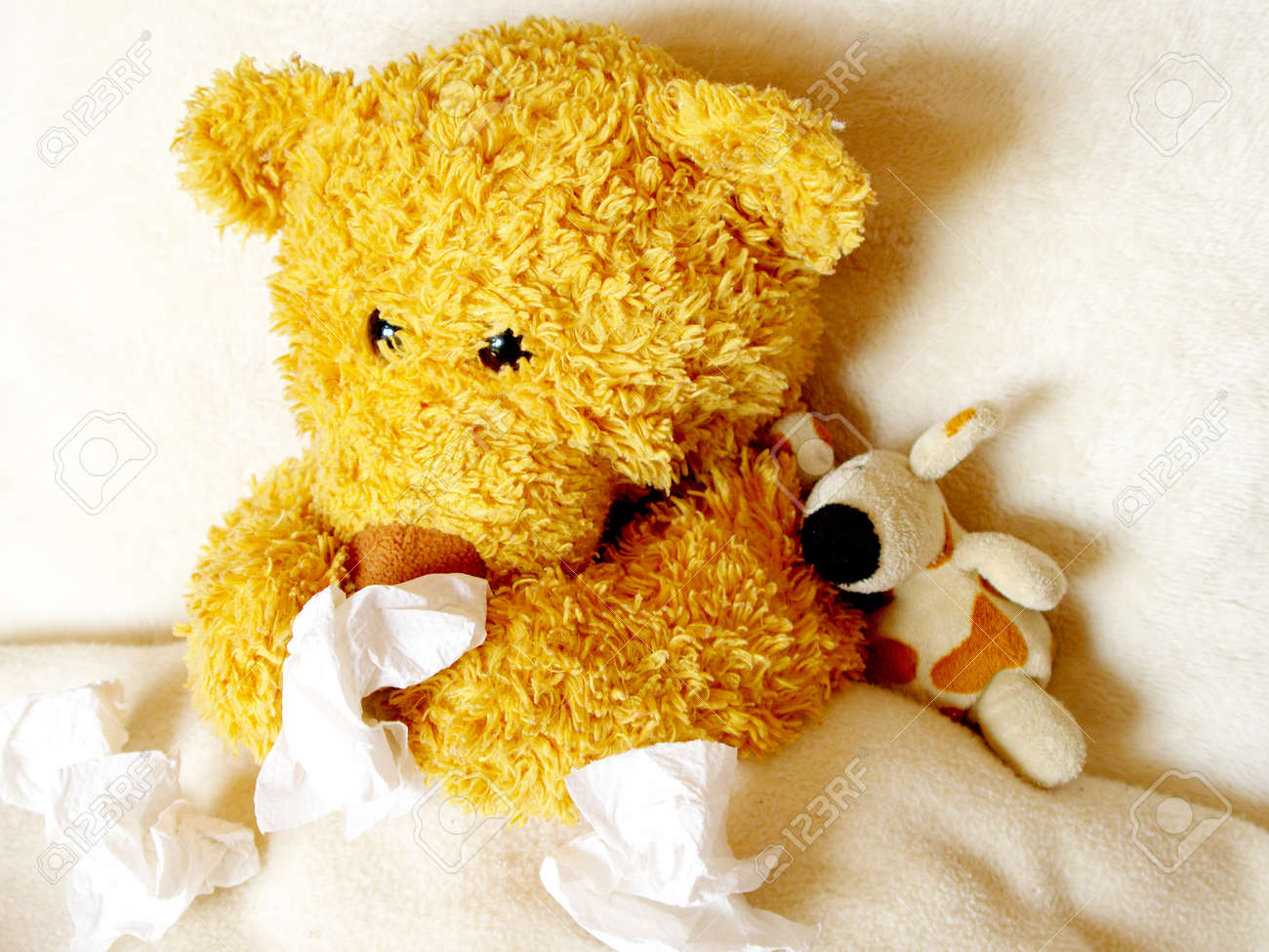 Ill teddy has a cold stock photo picture and royalty free image ill teddy has a cold stock photo 85546028 altavistaventures Choice Image