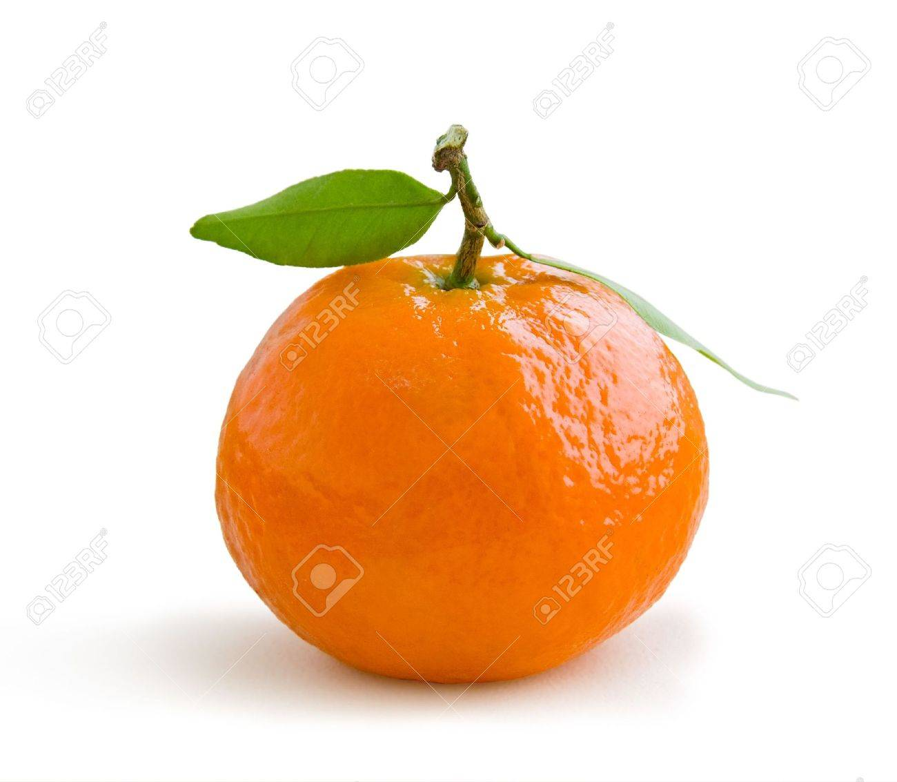 Fresh tangerine on stem with green leaves isolated on white Stock Photo - 6618769
