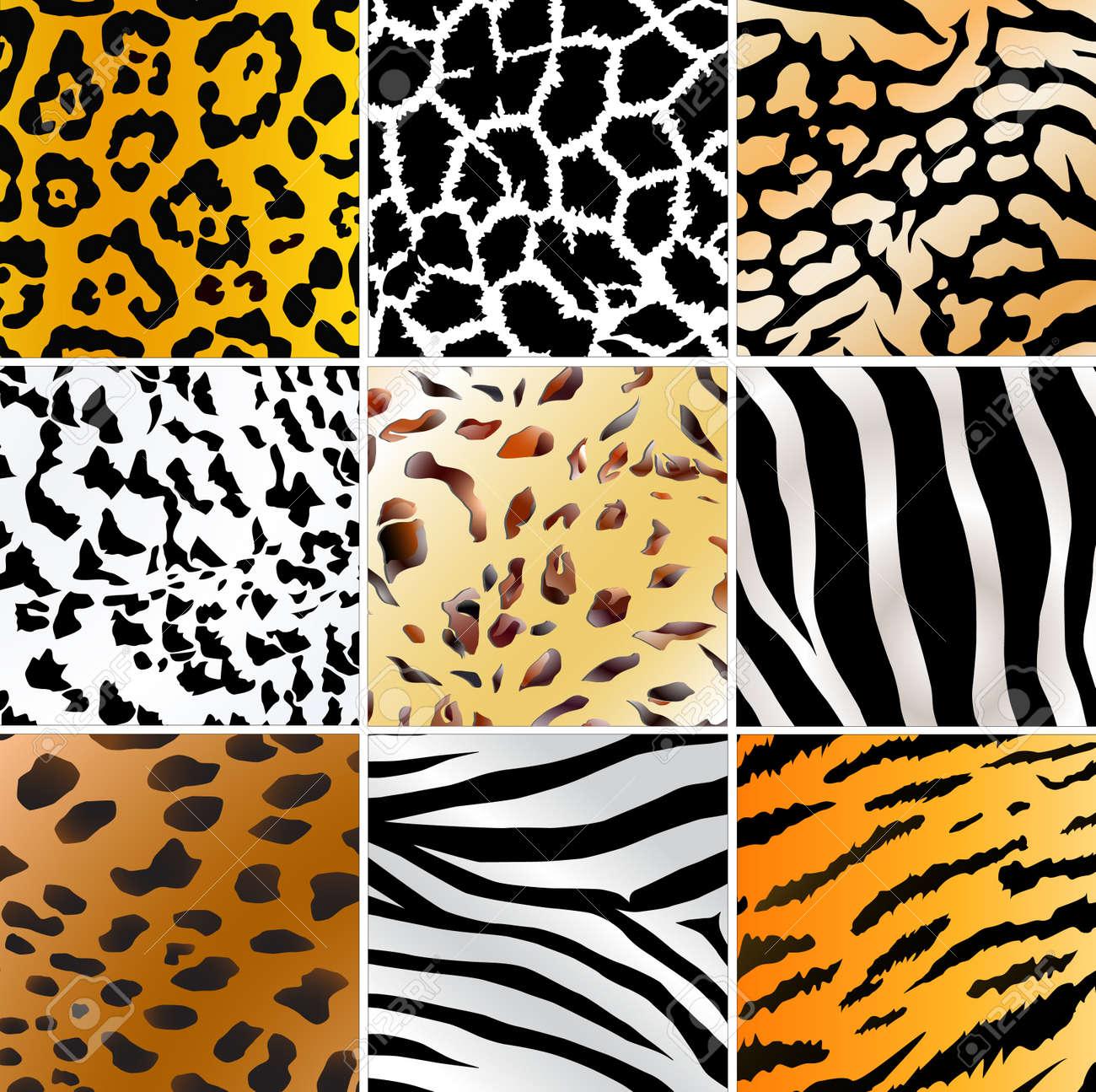 Set of nine different wild animals skin patterns - 6973386