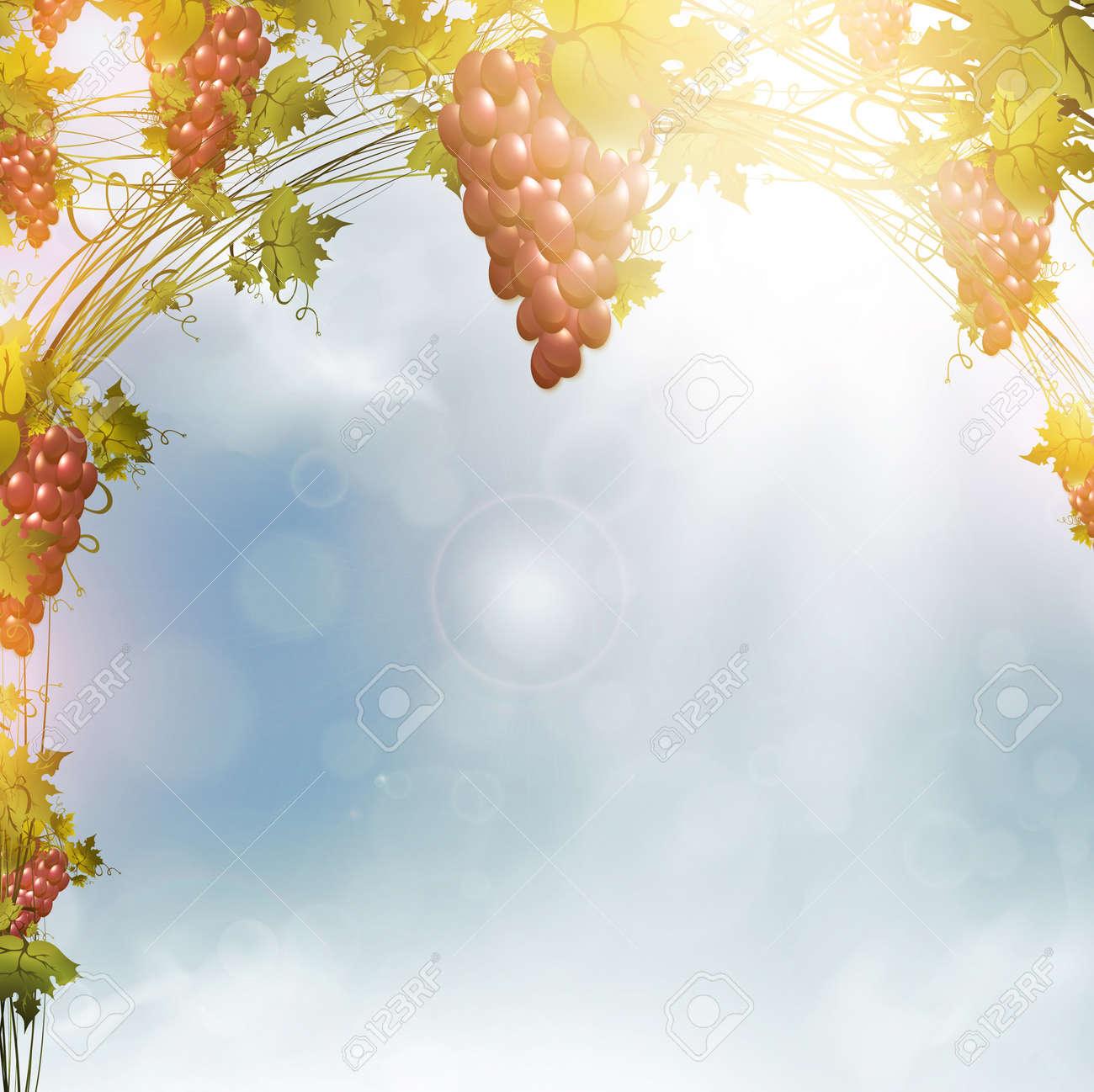 Illustration of red grape vine frame over blue sunny sky Stock Vector - 12485077