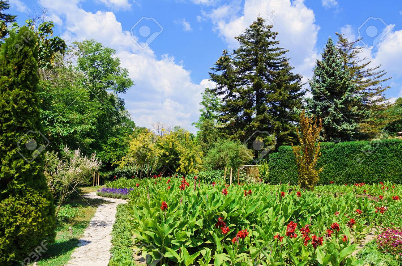 Diferentes Tipos De Plantas Y Flores En El Jardín Fotos, Retratos ...