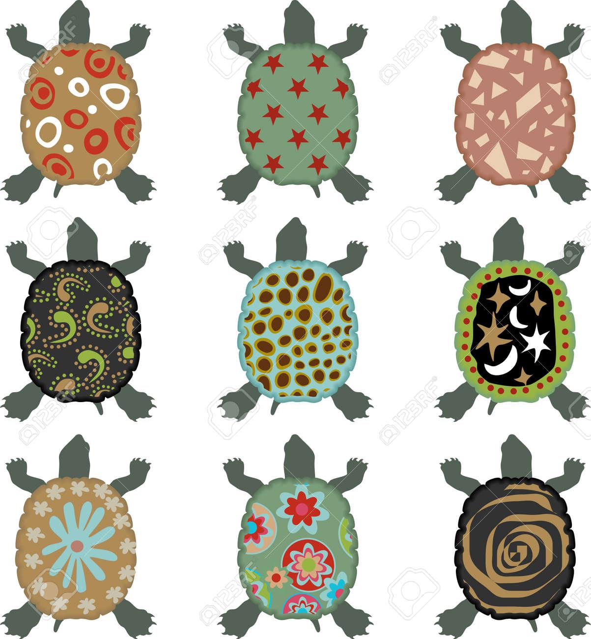 Safari Turtle Stock Vector - 13635365