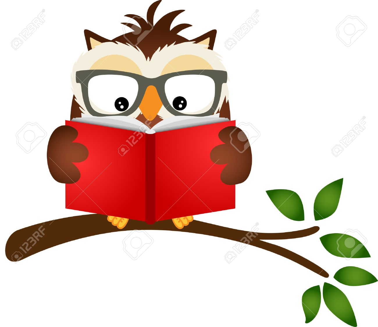 owl reading a book on tree branch royalty free cliparts vectors rh 123rf com