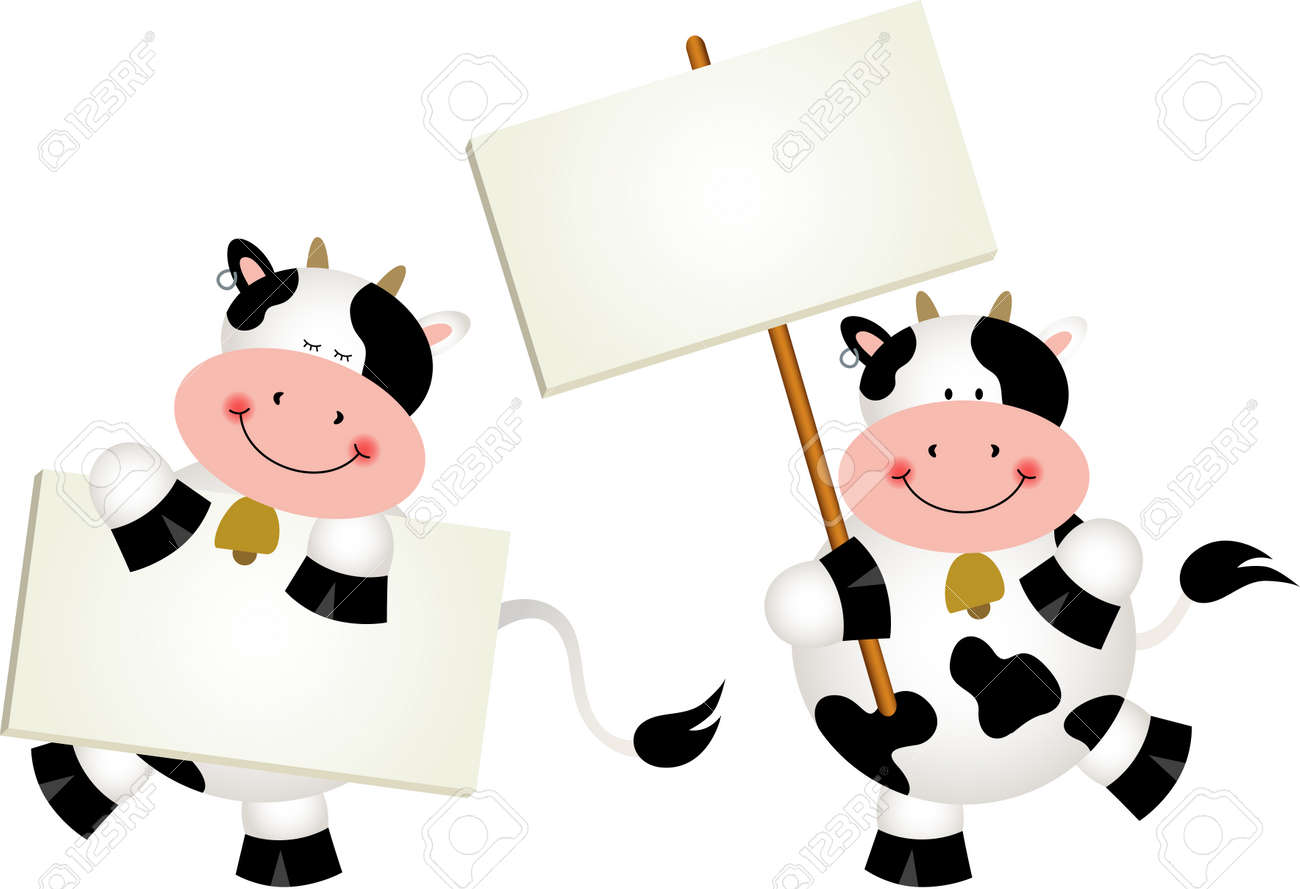 Couple cows with signboards - 45890397