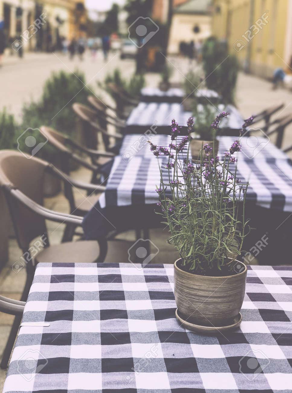 tisch mit blumentopf in einem gemütlichen café draußen lizenzfreie