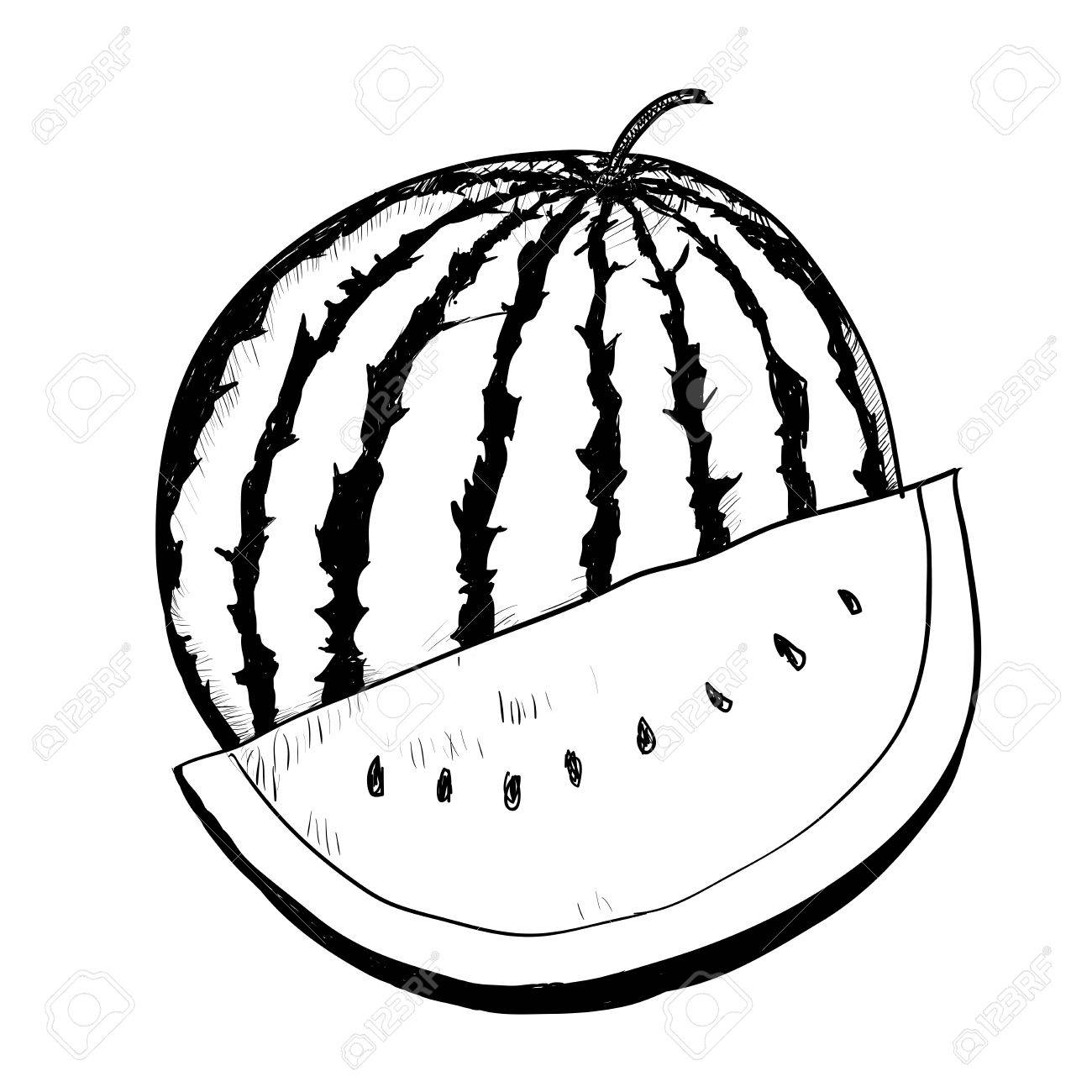 Hand drawing of watermelon on white background black and white simple line vector illustration for